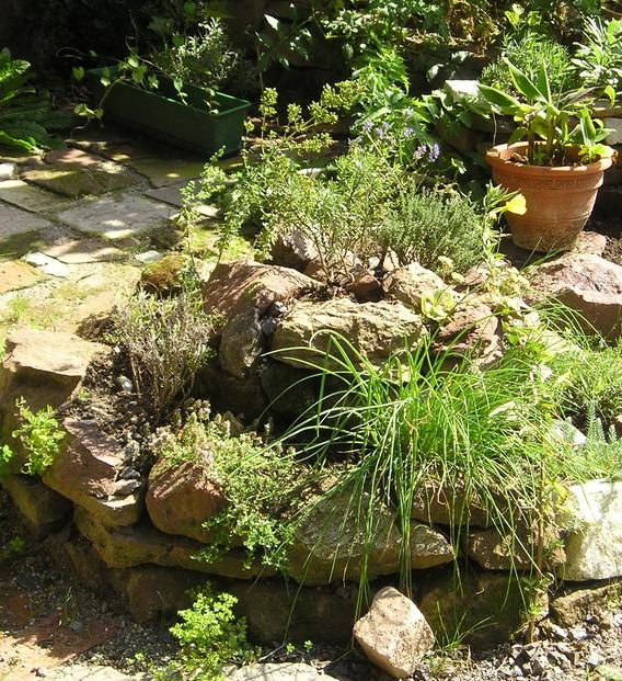 Essbare wildpflanzen freiamt garten for Naturnahe gartengestaltung